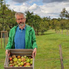 Leckeres Obst von den Bensberger Obstwiesen